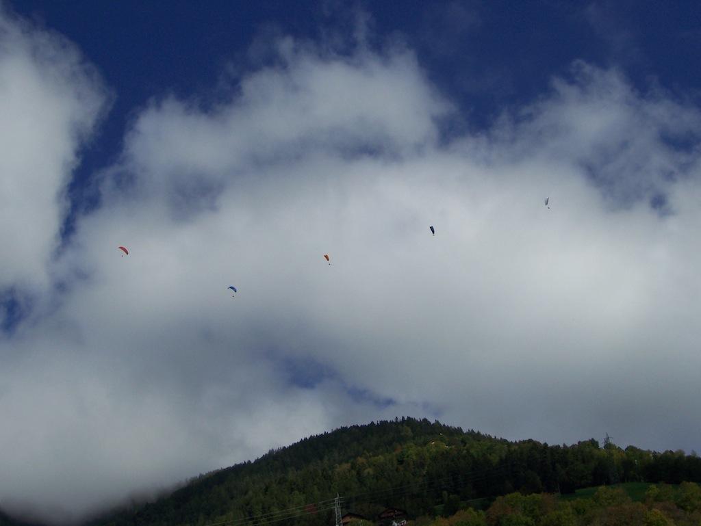 Entenfliegen 1